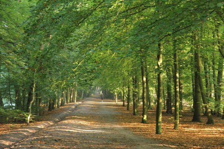 VakantiehuisNederland - Noord-Holland: De Reker Zon  [19]