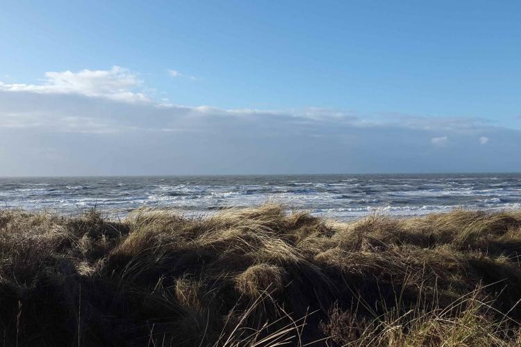 VakantiehuisNederland - Zuid-Holland: 't Zeepaardje  [35]