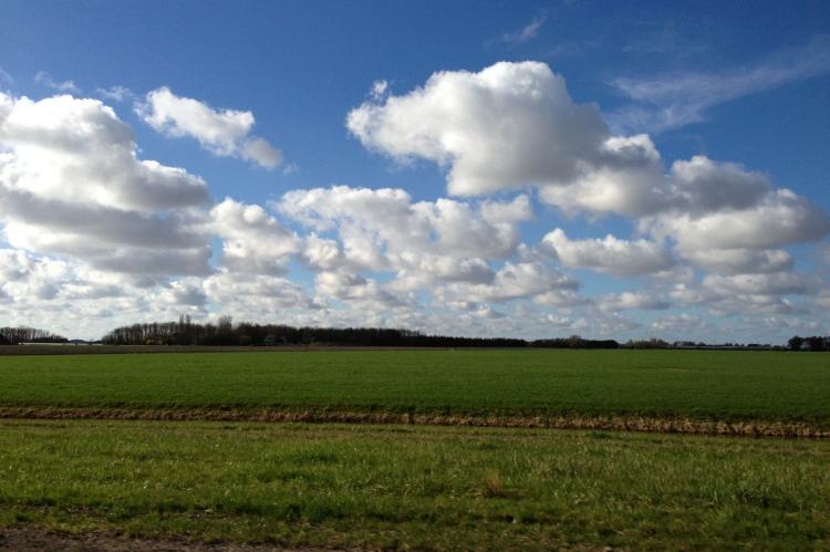 VakantiehuisNederland - Friesland: Recreatiepark de Friese Wadden 15  [34]