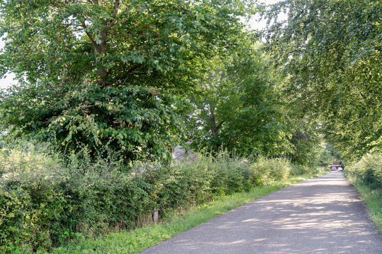 Holiday homeNetherlands - Limburg: Meschermolen 7  [29]