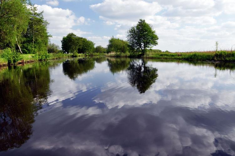 VakantiehuisNederland - Friesland: Het Bosmeer 1  [35]