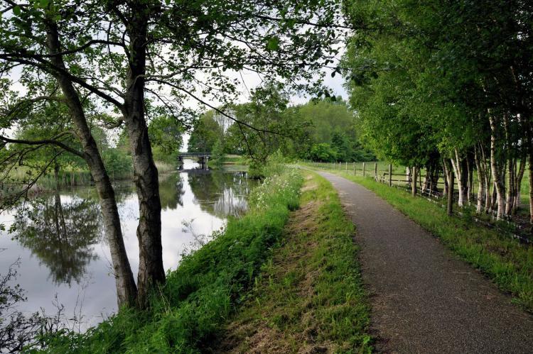 VakantiehuisNederland - Friesland: Het Bosmeer 1  [37]