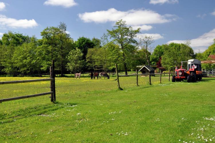 VakantiehuisNederland - Friesland: Het Bosmeer 1  [36]