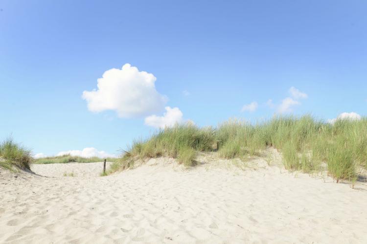 Holiday homeNetherlands - Noord-Holland: Zilte Bries  [23]