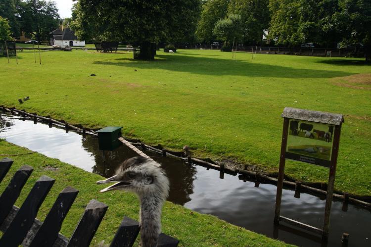 VakantiehuisNederland - Noord-Holland: Villa Kagok  [37]