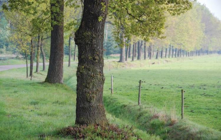 VakantiehuisNederland - Noord-Brabant: Het Uitzicht  [26]