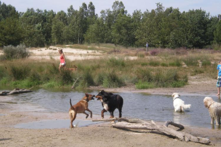 Holiday homeNetherlands - Noord-Brabant: Recreatiepark Duinhoeve 11  [22]