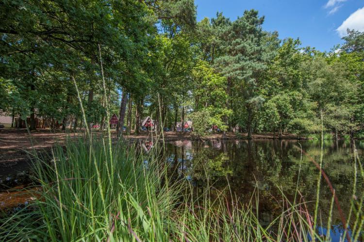 VakantiehuisNederland - Noord-Brabant: Bospark 't Wolfsven 7  [15]