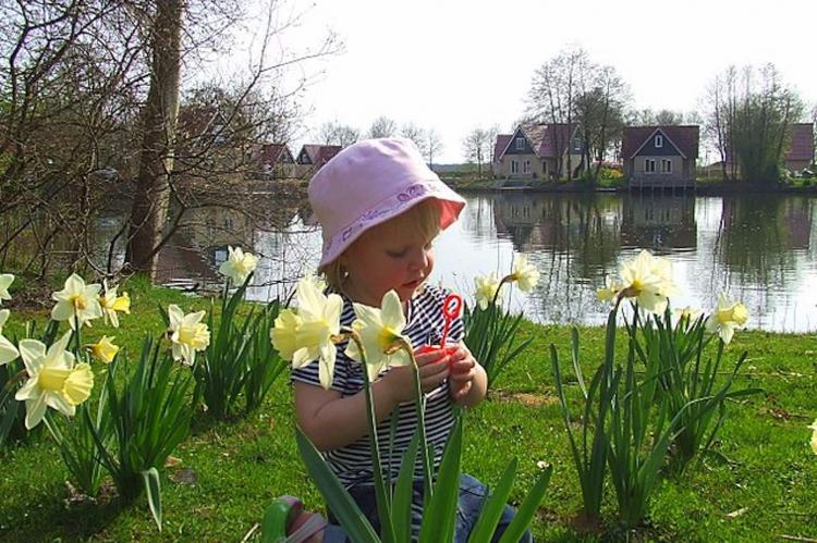 VakantiehuisNederland - Drenthe: Vakantiepark Het Timmerholt 11  [18]