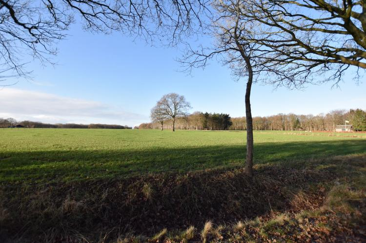 FerienhausNiederlande - Drenthe: Chalet Vrijzicht  [6]