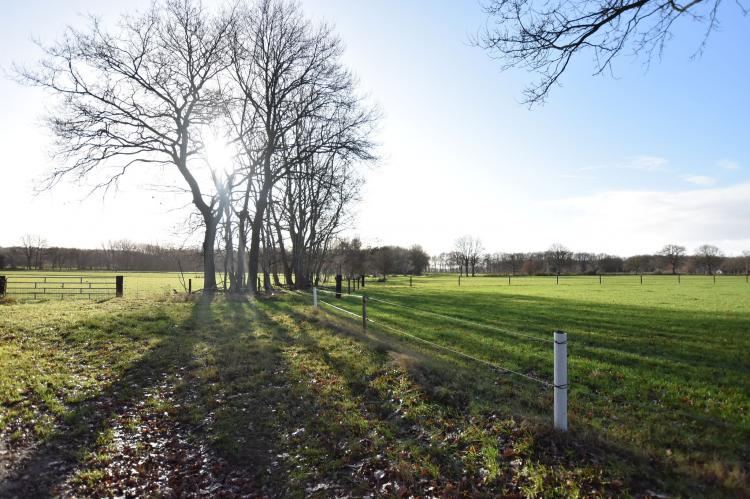 FerienhausNiederlande - Drenthe: Chalet Vrijzicht  [3]