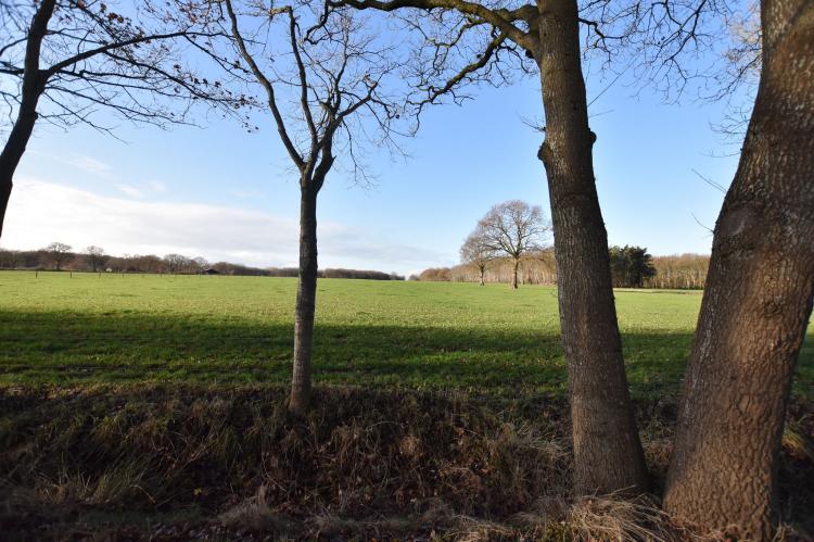 FerienhausNiederlande - Drenthe: Chalet Vrijzicht  [5]