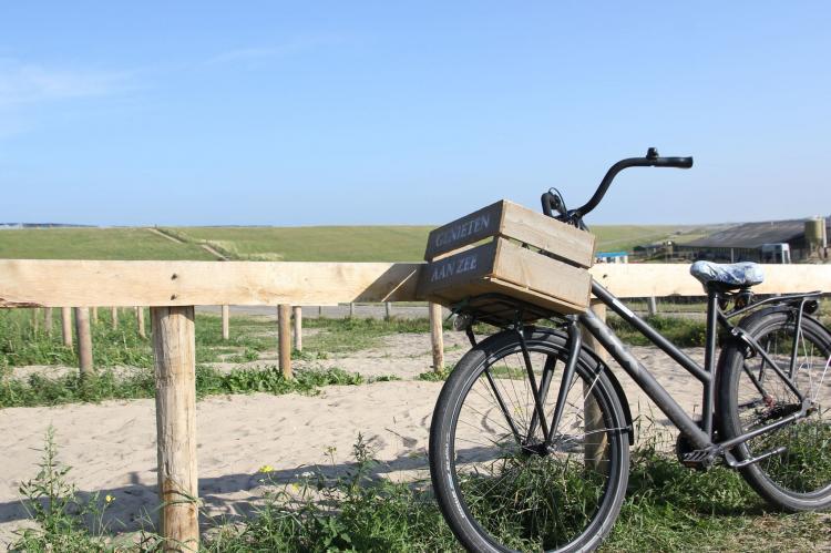 VakantiehuisNederland - Noord-Holland: Scoreldame 6-persoons  [35]