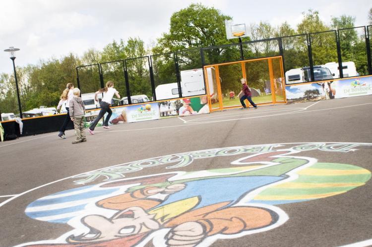 Holiday homeNetherlands - Gelderland: Recreatiepark de Boshoek 20  [16]