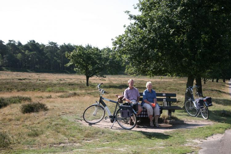 FerienhausNiederlande - Drenthe: Landgoed Het Grote Zand 1  [28]