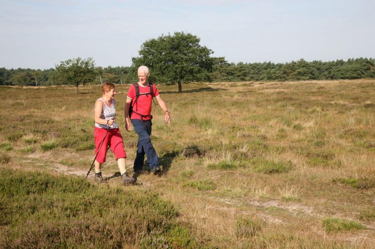 FerienhausNiederlande - Drenthe: Landgoed Het Grote Zand 1  [31]