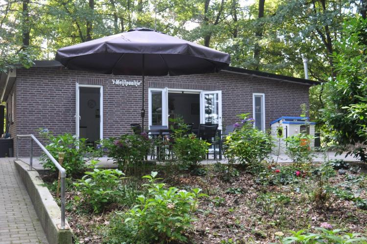Holiday homeNetherlands - Noord-Brabant: In het Bos  [2]