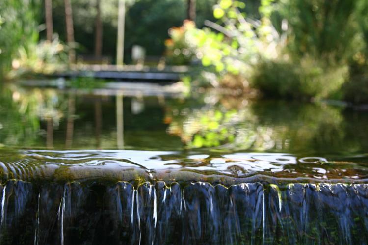 Holiday homeNetherlands - Overijssel: Vakantiepark Hessenheem 4  [22]