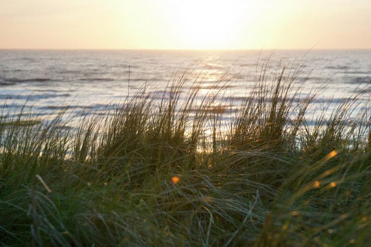 VakantiehuisNederland - Noord-Holland: Landelijk bij Zee  [30]