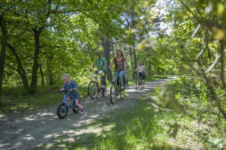 VakantiehuisNederland - Drenthe: Vakantiepark Hunzedal 12  [23]