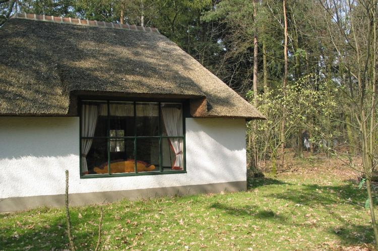 Holiday homeNetherlands - Noord-Brabant: Vakantiepark Herperduin 4  [1]