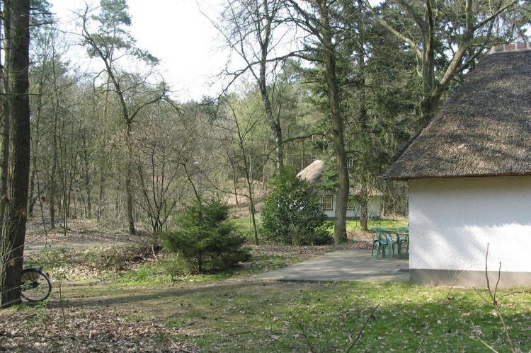 Holiday homeNetherlands - Noord-Brabant: Vakantiepark Herperduin 4  [8]