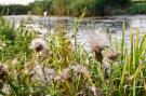 Holiday homeNetherlands - Overijssel: Vakantiepark Mölke 20