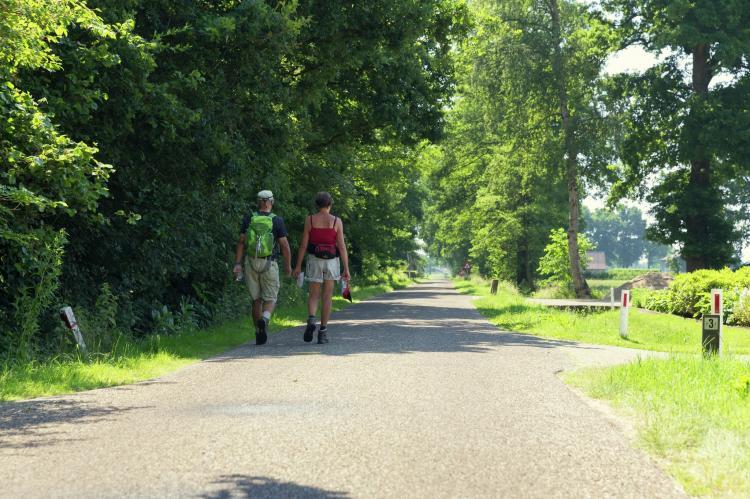 FerienhausNiederlande - Overijssel: Vakantiepark Mölke 20  [21]