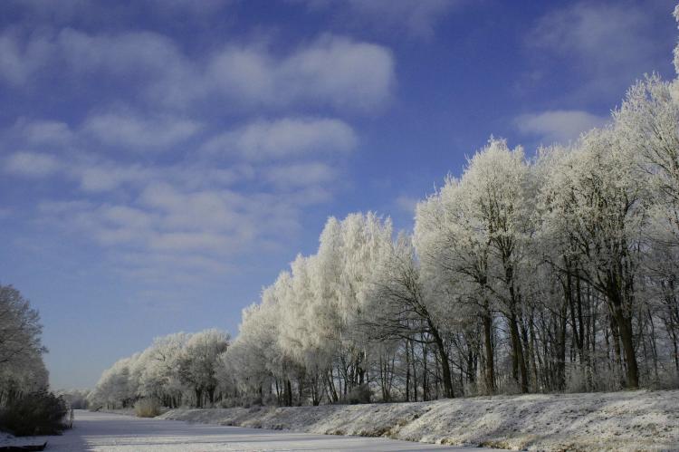 Holiday homeNetherlands - Overijssel: Langgoor  [31]