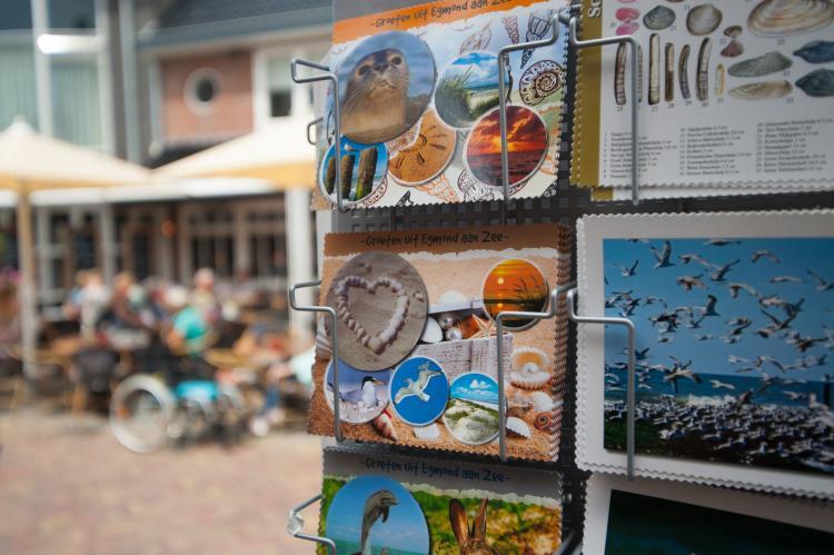 VakantiehuisNederland - Noord-Holland: HuizeDuin  [28]