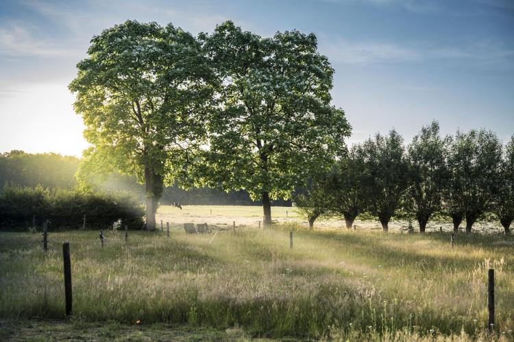 VakantiehuisNederland - Overijssel: Design Farmers Barn Twente  [17]