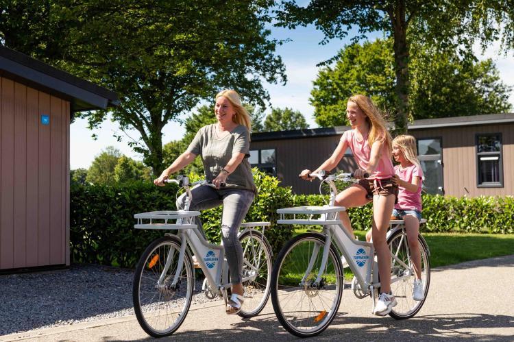 Holiday homeNetherlands - Gelderland: Recreatiepark Het Esmeer 4  [9]