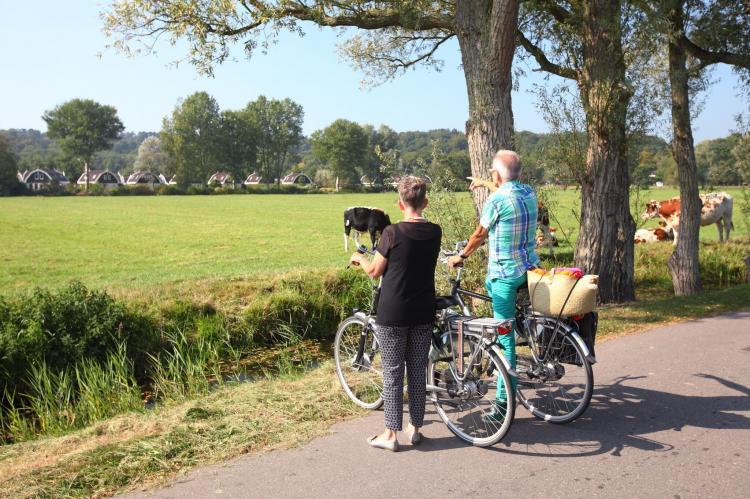 VakantiehuisNederland - Noord-Holland: Vakantiepark Koningshof 14  [28]