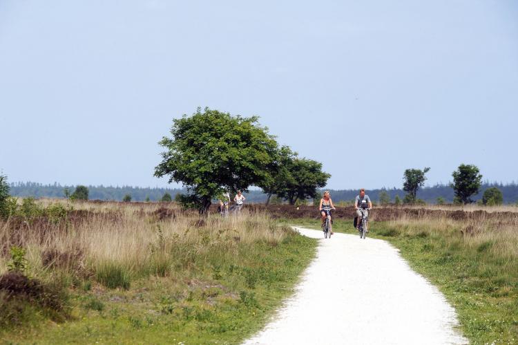 VakantiehuisNederland - Drenthe: Vakantiepark het Drentse Wold 4  [27]