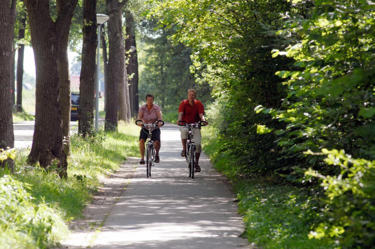 VakantiehuisNederland - Drenthe: Vakantiepark het Drentse Wold 4  [25]