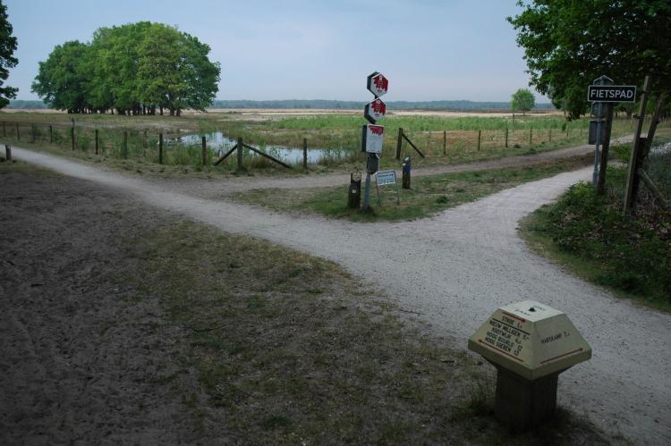 Holiday homeNetherlands - Gelderland: Landgoed De IJsvogel 9  [38]