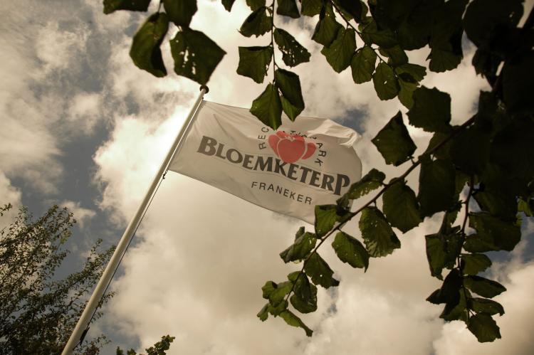 Holiday homeNetherlands - Friesland: Recreatiepark Bloemketerp 4  [10]