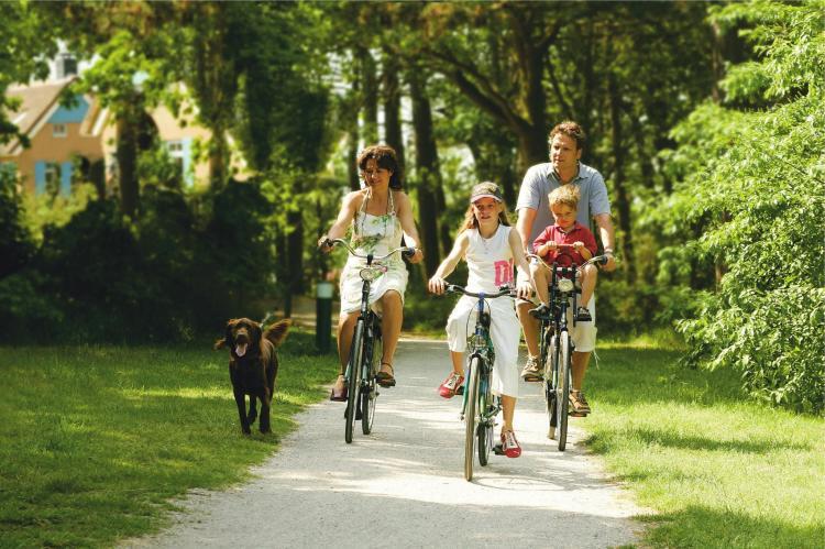 VakantiehuisNederland - Waddeneilanden: Kustpark Texel 6  [18]