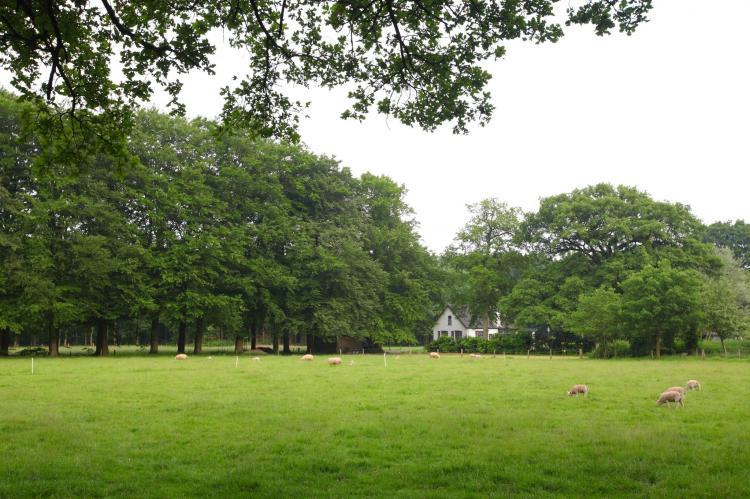 VakantiehuisNederland - Gelderland: Bospark de Schaapskooi 7  [17]