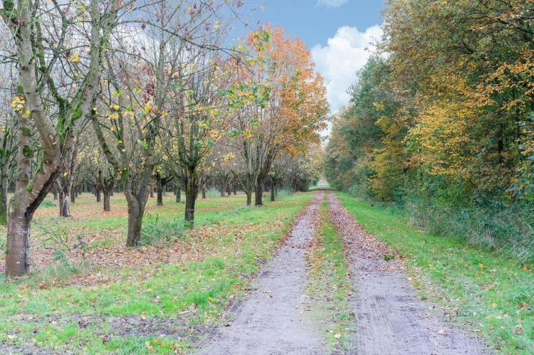 Holiday homeNetherlands - Flevoland: Zonnig Hosterwold  [38]