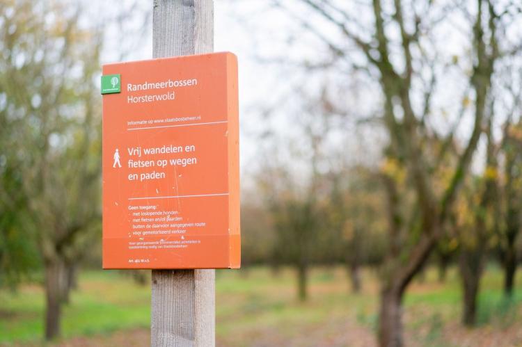 Holiday homeNetherlands - Flevoland: Zonnig Hosterwold  [39]