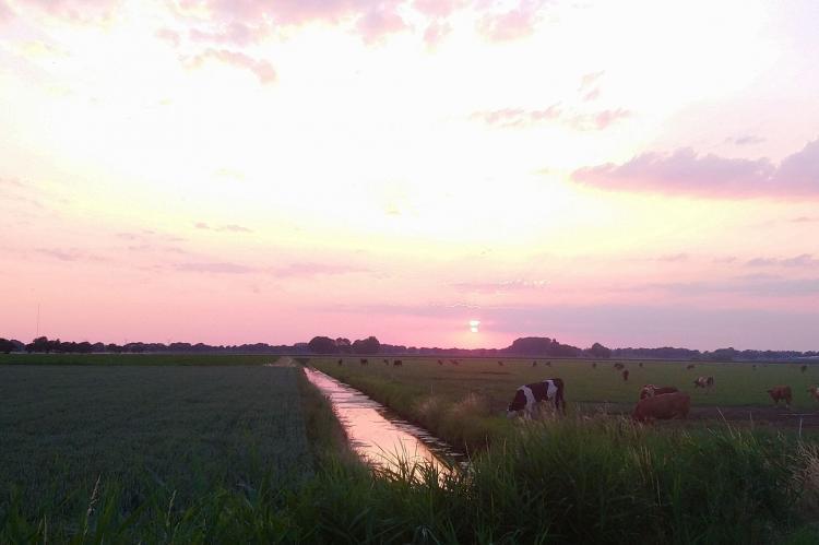 VakantiehuisNederland - Noord-Brabant: Polderhuisje 3 Aarde Groene Camping Lage Zwaluwe  [21]