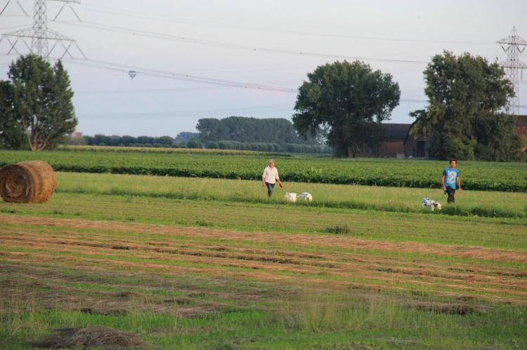 VakantiehuisNederland - Noord-Brabant: Polderhuisje 3 Aarde Groene Camping Lage Zwaluwe  [30]