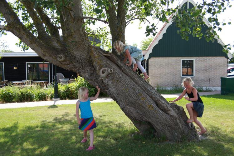 Holiday homeNetherlands - Noord-Holland: Recreatiepark Wiringherlant - Wiringher Chalet 1  [37]
