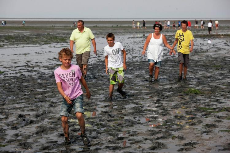 VakantiehuisNederland - Waddeneilanden: De Krim Texel 1  [30]