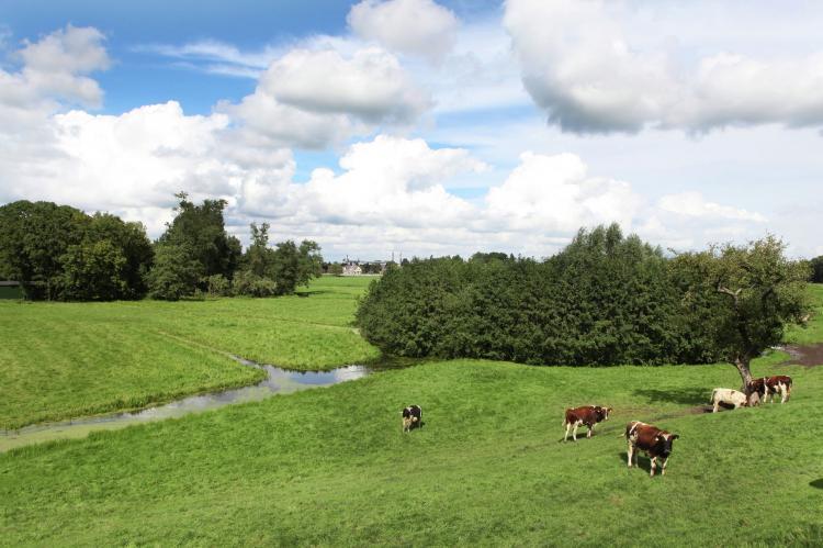 VakantiehuisNederland - Zuid-Holland: Hoeve Hoogst Tevreden  [9]