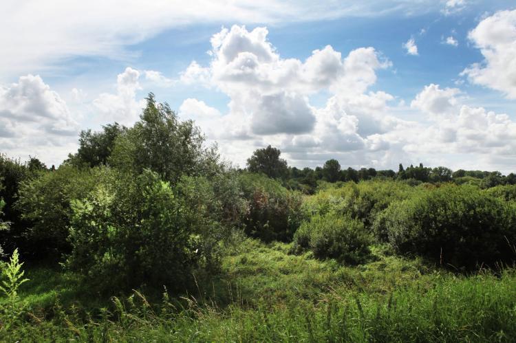 VakantiehuisNederland - Zuid-Holland: Hoeve Hoogst Tevreden  [10]