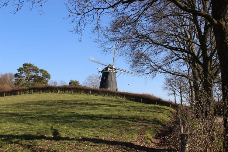 VakantiehuisNederland - Limburg: Bernardushoeve - NR13  [31]