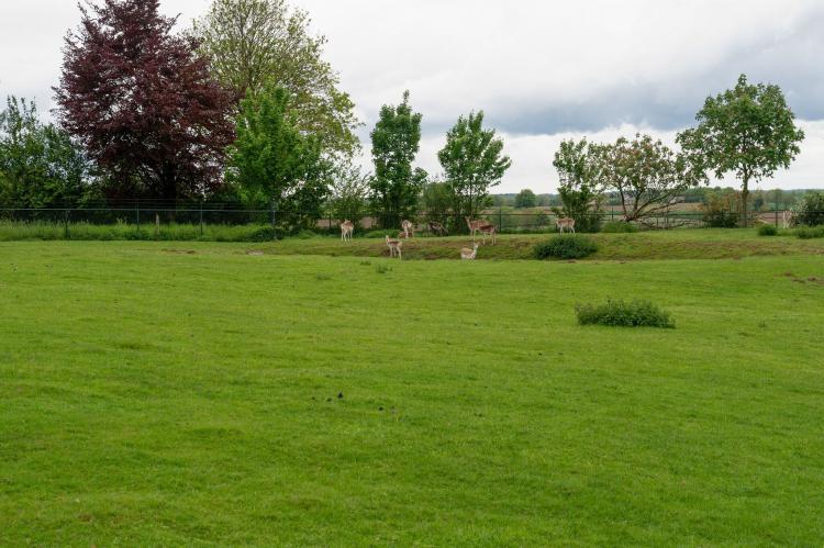 VakantiehuisNederland - Limburg: Bernardushoeve - NR13  [34]