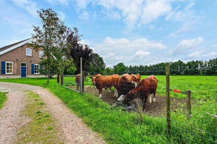 Holiday homeNetherlands - Gelderland: Welskerveen 5  [32]